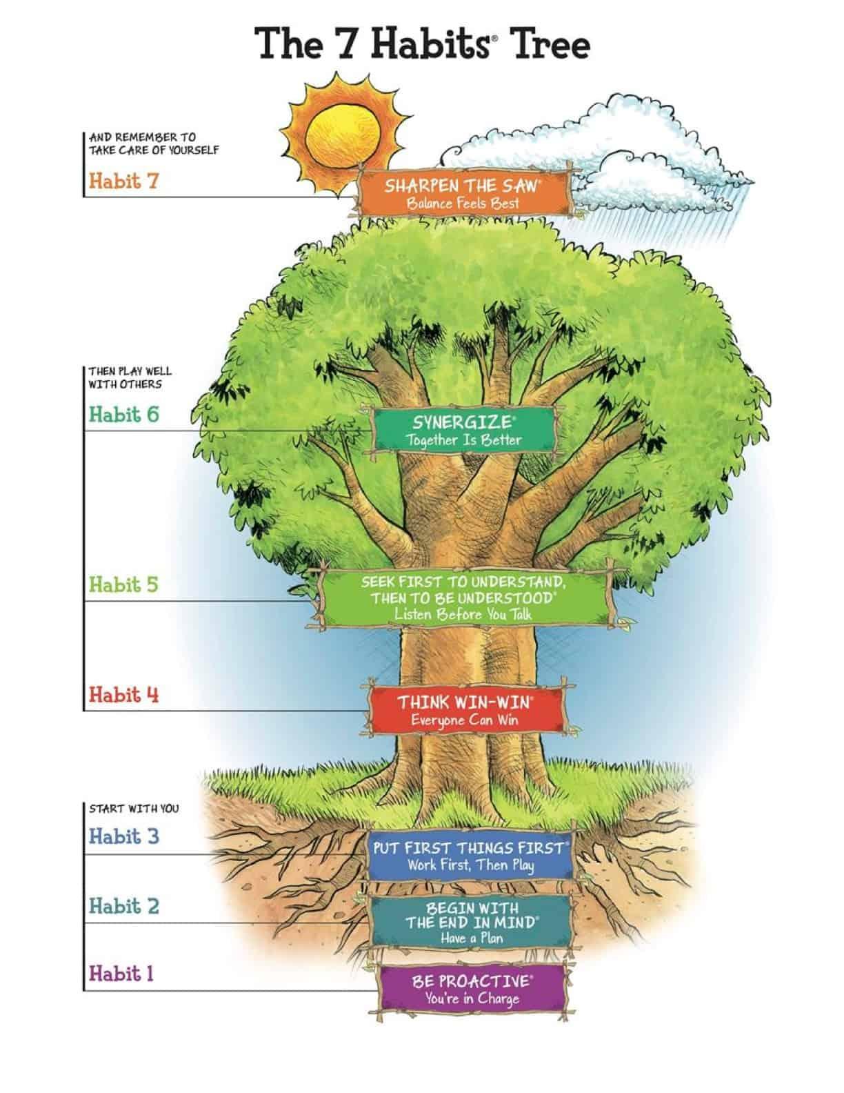 7 Habits Tree of Learning Tree Oakleigh Grammar