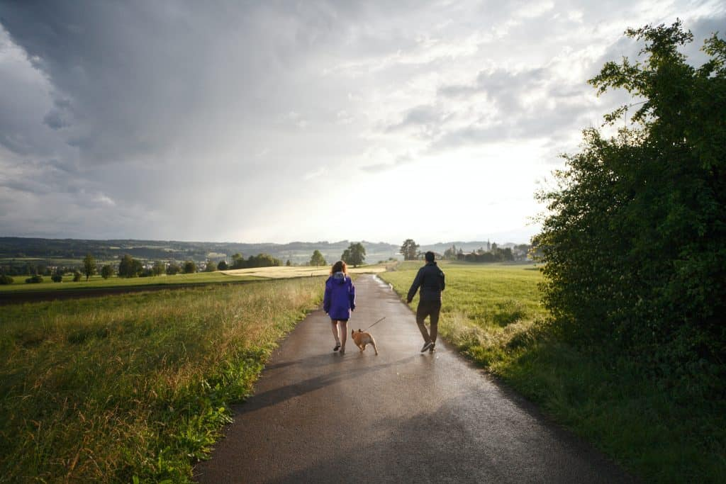 Man And Woman Walking Dog On Tarmacked Road 2495563